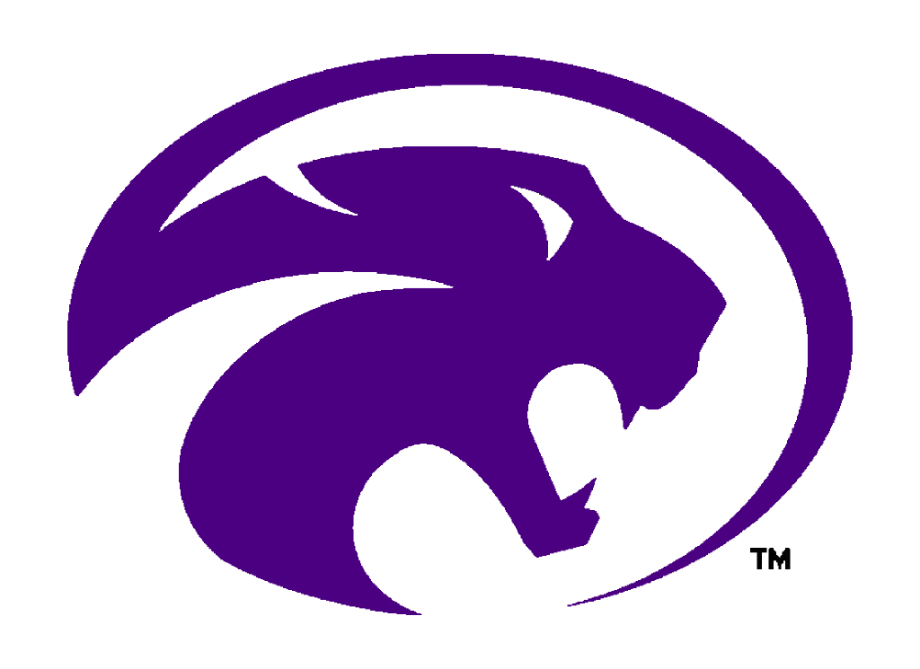 Image of Panther Logo